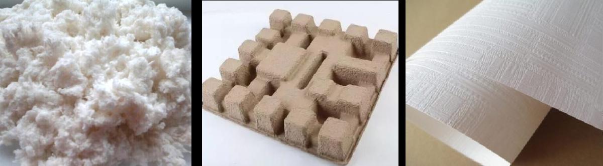 植物纤维纸浆